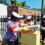 UD Students open beehive